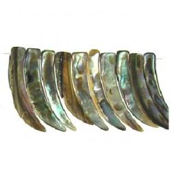 abalone horn shape mop-f125