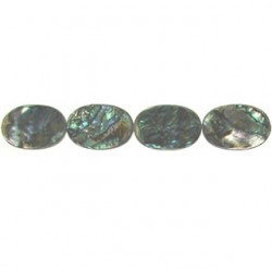 abalone oval aba-f120