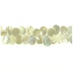 teardrop shell white mop-p229