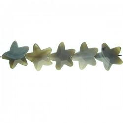 Gray Agate Star