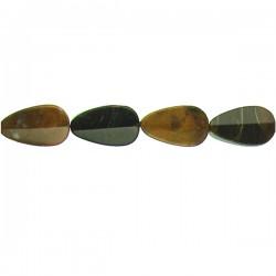 Chinese Petrified Wood Drop CD